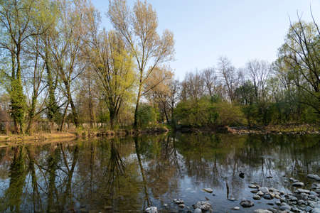 monza: Monza Park (Lombardy, Italy): the Lambro river at spring Stock Photo