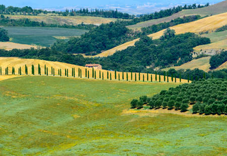 val d'orcia: Crete senesi, characteristic landscape in Val dOrcia (Siena, Tuscany, Italy), at summer.