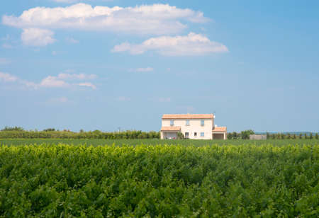 camargue: White house in the countryside of Camargue (Provence, France) at spring (june) Stock Photo