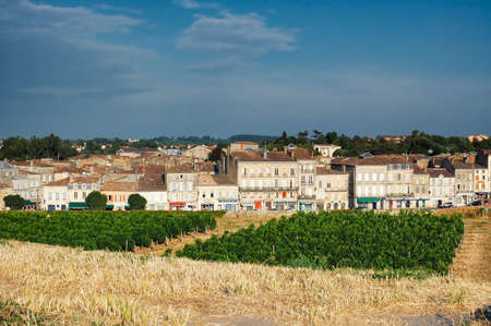 gironde: Blaye (Gironde, Aquitaine, France): the historic town with vineyard Stock Photo