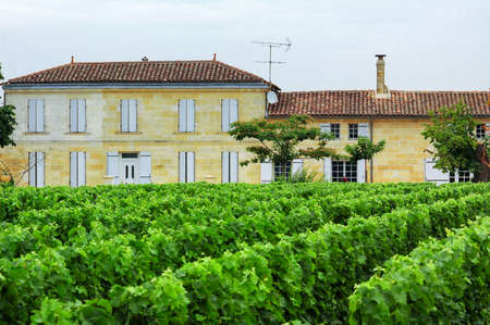 aquitaine: Country landscape with vineyard in Gironde (Aquitaine, France) near Bordeaux, at summer