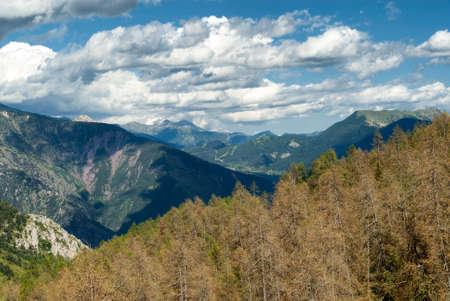 alpes maritimes: Road of Col de la Couillole (Alpes-Maritimes, Alpes- Provence-Cote dAzur, France), mountain landscape