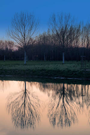 nord: Parco Nord in Milan (Lombardy, Italy) at evening. Reflection in the lake