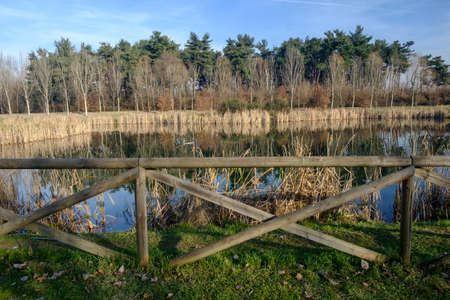 monza: Brianza (Lombardy, Italy): the little lake into the Park of Grugnotorto at december