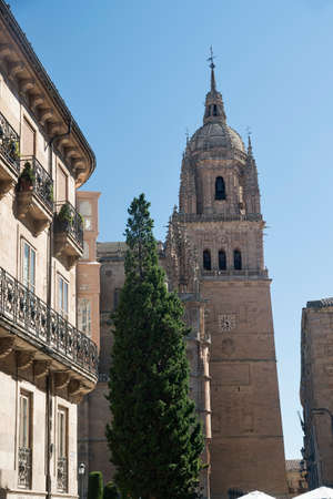 Salamanca (Castilla y Leon, Spain): exterior of the medieval cathedral