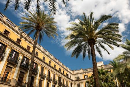 ramblas: Barcelona (Catalunya, Spain): Plaza Real (Placa Reial, Royal Square), near the ramblas