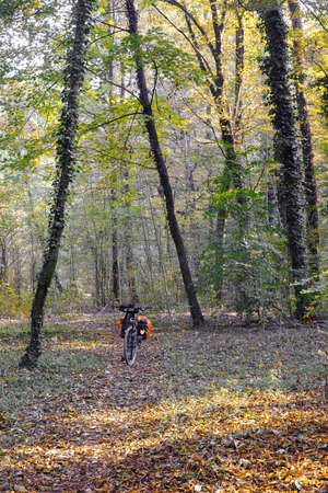 monza: Monza (Brianza, Lombardy, Italy): the park at fall (october) and a bicycle with bags