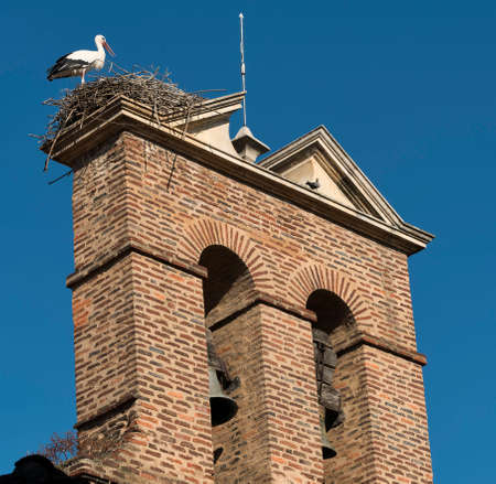Leon (Castilla y Leon, Spain): a stork in the nest at top of an old church belfry along the Calle Conde Luna, at summer