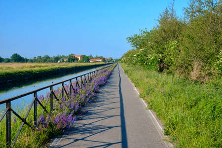 Cycling lane along the Naviglio Pavese, from Pavia to Milan (Lombardy, Italy) in the springtime.