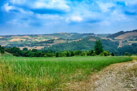 Rural landscape at summertime along the road from Val di Nizza to Carmine (Pavia, Lombardy, Italy) Stock Photo