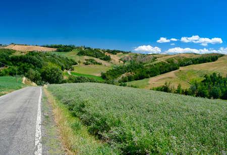 Summer landscape near Rivalta di Lesignano de Bagni (Parma, Emilia-Romagna, Italy), with the typical rocky inlets