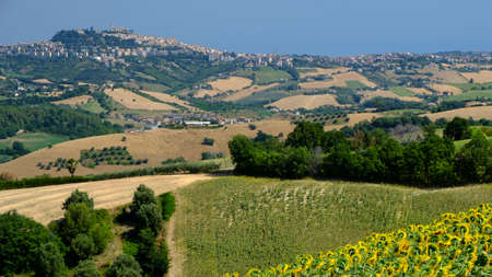 Rural landscape at summer along the road from Fermo to Monterubbiano (Marches, italy) Stock Photo
