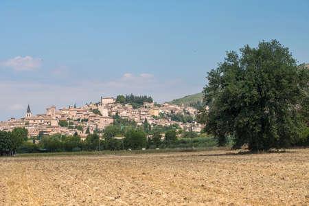 View of Spello, medieval city (Perugia, Umbria, Italy)