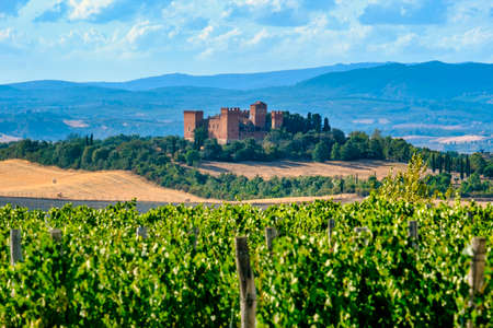 Country landscape along the road fron Montepulciano to Asciano, Siena, Tuscany, Italy, at summer. Vineyards and castle Editorial
