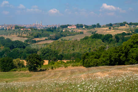 Typical rural landscape in the region of Chianti, in Tuscany, Italy, in a sunny summer day. Panoramic view of Siena 免版税图像
