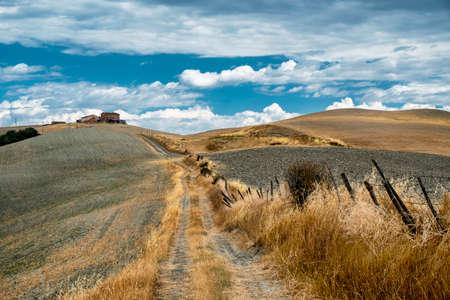 Landlandschaft entlang der Straße von Asciano nach Torre a Castello, Siena, Toskana, Italien, am Sommer Standard-Bild