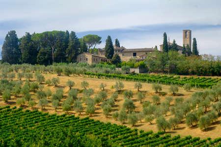 Landscape along the road from Poggibonsi to San Gimignano, Siena, Tuscany, Italy, at summer