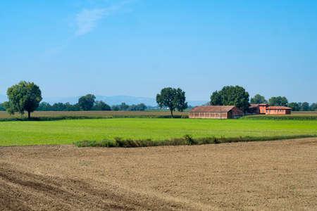 Rural landscape along the Po cycle path near Guardamiglio and San Rocco al Porto (Lodi, Lombardy, Italy) at summer