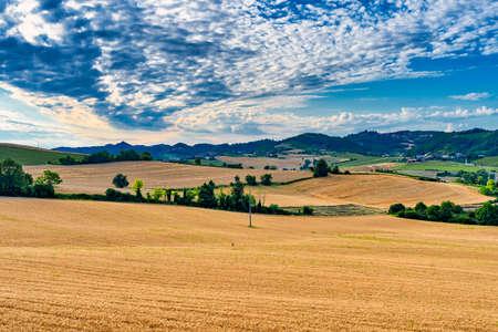 Summer landscape near Moncalvo, Alessandria, Monferrato, Piedmont, Italy.