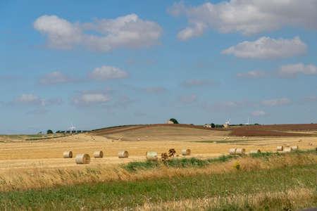 Rural landscape near Altamura and Santeramo in Colle, Bari, Apulia, Southern Italy, at summer.
