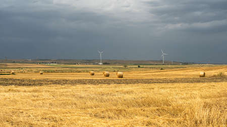 Rural landscape near Laterza and Santeramo in Colle, Apulia, Southern Italy, at summer. Storm incoming.
