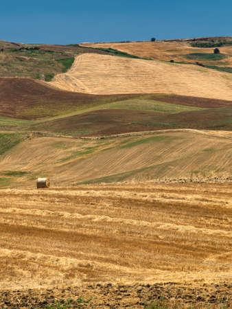 Rural landscape near Gravina di Puglia, Bari, Apulia, Southern Italy, at summer. Stock Photo