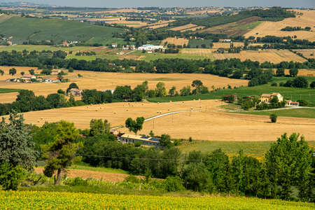 Rural landscape at summer near Macerata, Marches, Italy