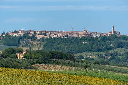 Rural landscape at summer near Treia, Macerata, Marches, Italy