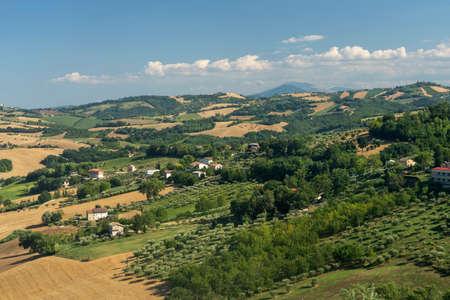 Rural landscape at summer near Mogliano, Macerata, Marches, Italy