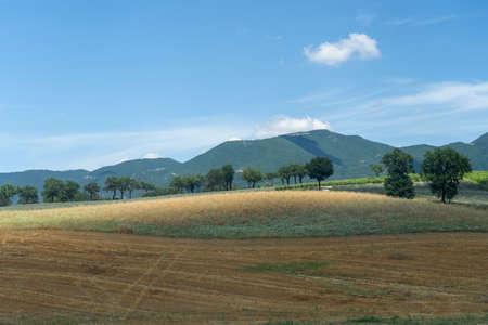 Rural landscape near Fabriano, Ancona, Marche, Italy at summer