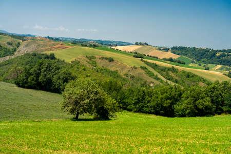 Country landscape at summer at Rivalta di Lesignano Bagni, Parma, Emilia-Romagna, Italy