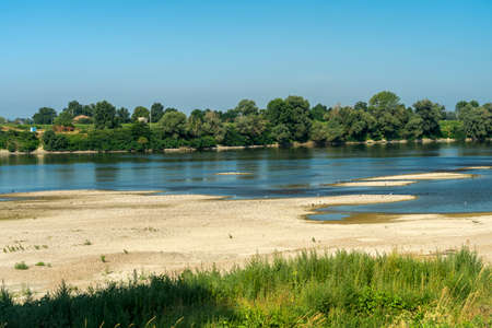 Summer landscape along the cycle path of the Po river, iin the Lodi province, Lombardy, Italy. Water birds 版權商用圖片