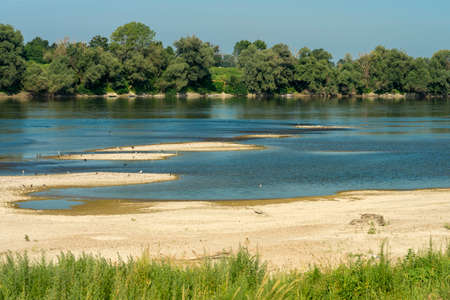 Summer landscape along the cycle path of the Po river, iin the Lodi province, Lombardy, Italy. Water birds Stock Photo