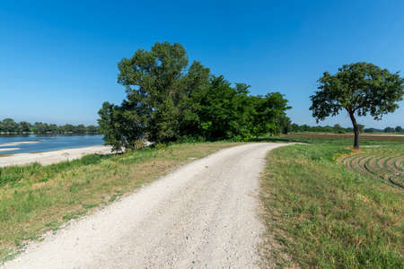 Summer landscape along the cycle path of the Po river, iin the Lodi province, Lombardy, Italy