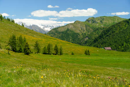 Mountain landscape at summer along the road to Vivione pass, Bergamo, Lombardy, Italy