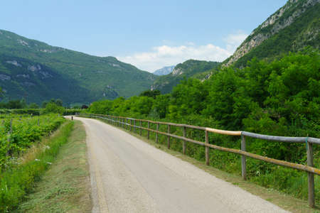 VIneyards and apple orchards along the cycleway from Torbole to Rovereto, Trento, Trentino Alto Adige, Italy, at summer Archivio Fotografico