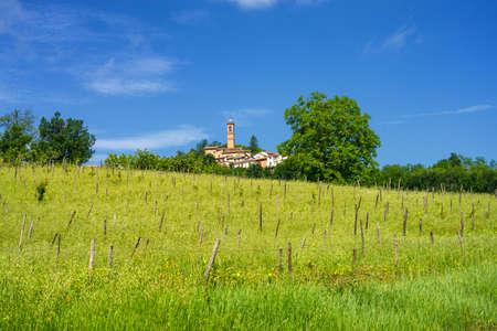 Landscape on the Tortona hills (Colli Tortonesi), in the Alessandria province, Piedmont, Italy, at springtime, near Volpedo