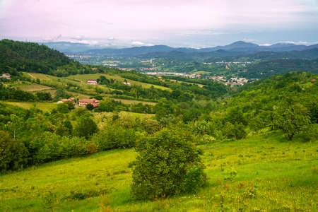 Rural landscape in Monferrato,. Vineyard near Gavi, Alessandria province, Piedmont, italy
