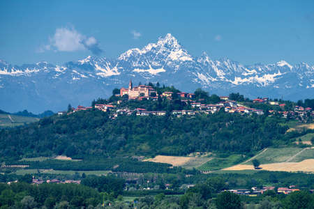Rural landscape of vineyards at springtime in Langhe, Cuneo province, Piedmont, Italy