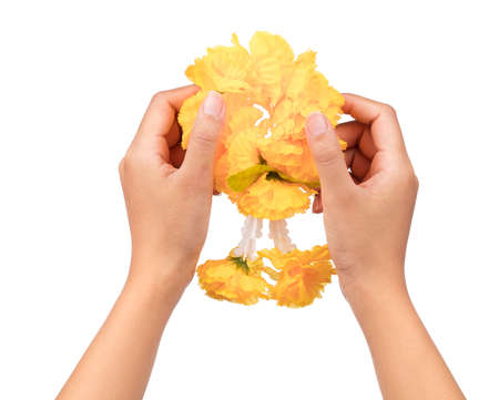 hand holding calendula garland isolated on white background Stock Photo