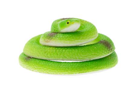 sound bite: Snake toy isolated on white background. Stock Photo