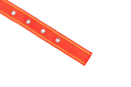 Red of dog collar isolated on a white background