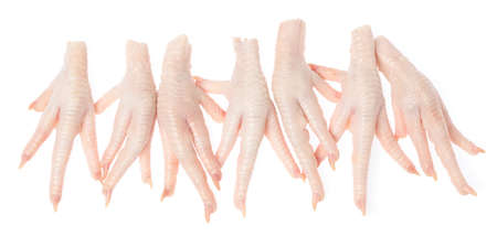 Raw chicken feet isolated on white background