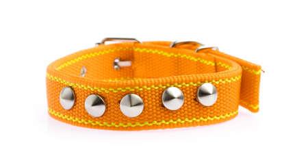 Orange of dog collar isolated on a white background