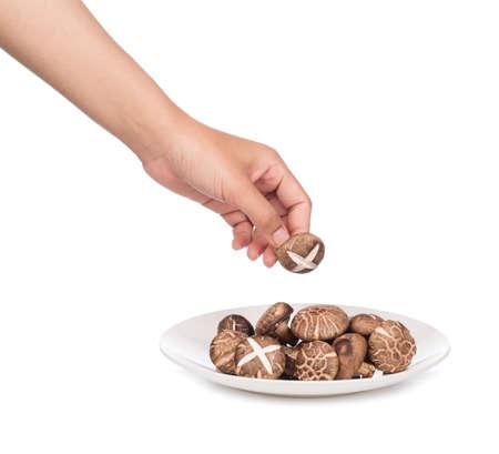 hand holding fresh shiitake mushroom on plate isolated on white background