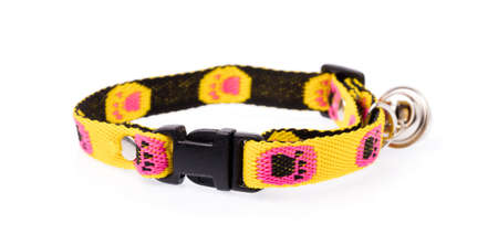 A yellow dog collar isolated on a white background.