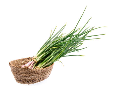 basket of onion spring isolated on white background