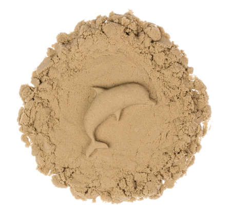 Sand Sculpture of a animall isolated on white background