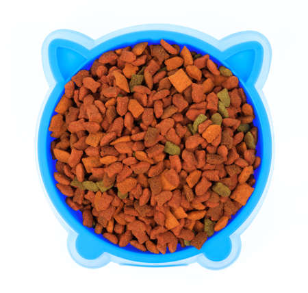 blue plastic bowl full with dog food isolated on white background