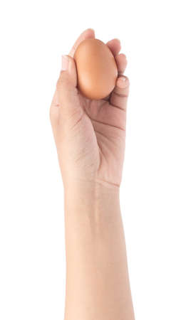 hand holding chicken eggs isolated on white background